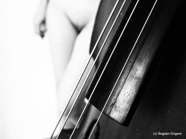 nuduri artistice - muzica clasica
