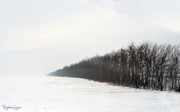 Bogdan Grigore - Peisaje - Dobrogea Iarna