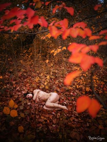 Bogdan Grigore - Artistic Nudes - Toamna